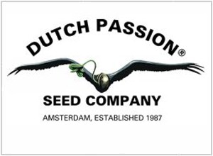 Dutch Passion